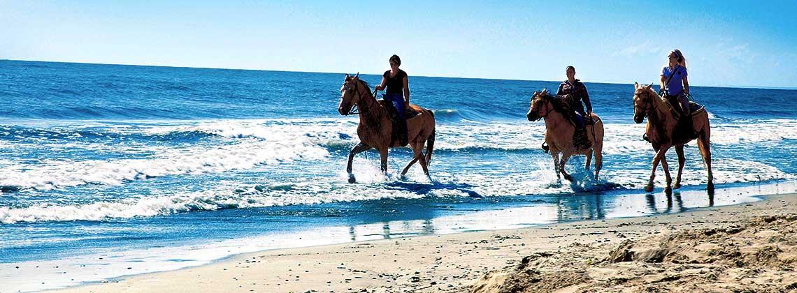 Equitazione for Capodanno alle canarie